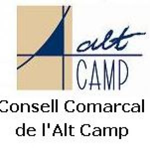 consell_comarcal_20090910194804